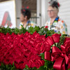 The Garland of Roses await the winner of the 145th Kentucky Derby winner.