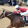 Untapable, Rosie Napravnik up, wins the KY Oaks, Churchill Downs, Louisville, KY 5/3/14, photo by Mathea Kelley;