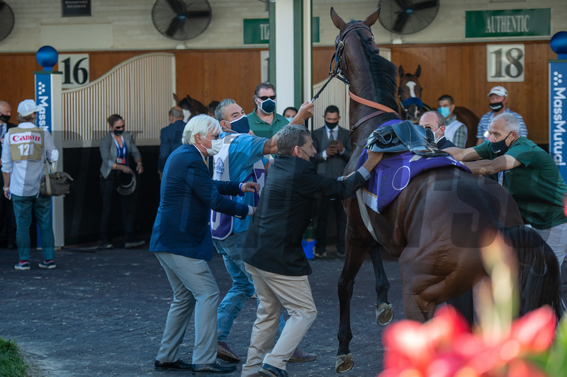Thousand Words in the paddock before the Kentucky Derby (G1) at Churchill Downs, Louisville, KY on September 5, 2020.