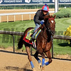Irish War Cry Kentucky Derby Chad B. Harmon