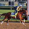 King Fury on the track at Churchill Downs on April 26, 2021. Photo By: Chad B. Harmon