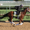 Patch Kentucky Derby Chad B. Harmon