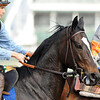 Zenyata at churchill downs, 4.29.2009
