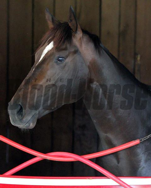 McCraken Kentucky Derby Chad B. Harmon
