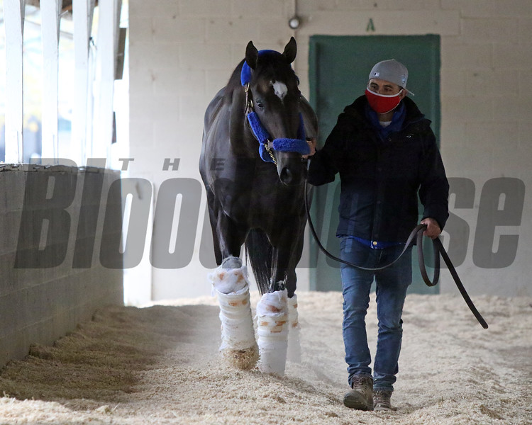 Rock Your World arrives at Churchill Downs on April 25, 2021. Photo By: Chad B. Harmon