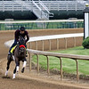 Hot Rod Charlie on the track at Churchill Downs on April 28, 2021. Photo By: Chad B. Harmon