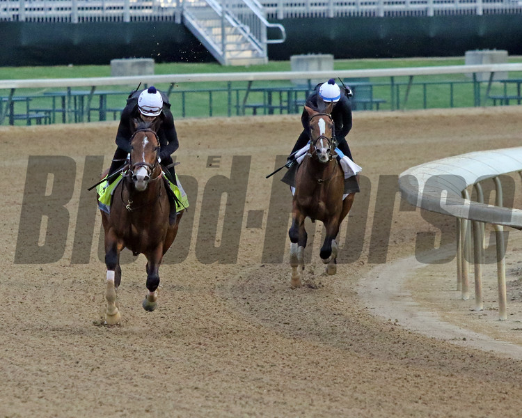 Highly Motivated on the track at Churchill Downs on April 24, 2021. Photo By: Chad B. Harmon