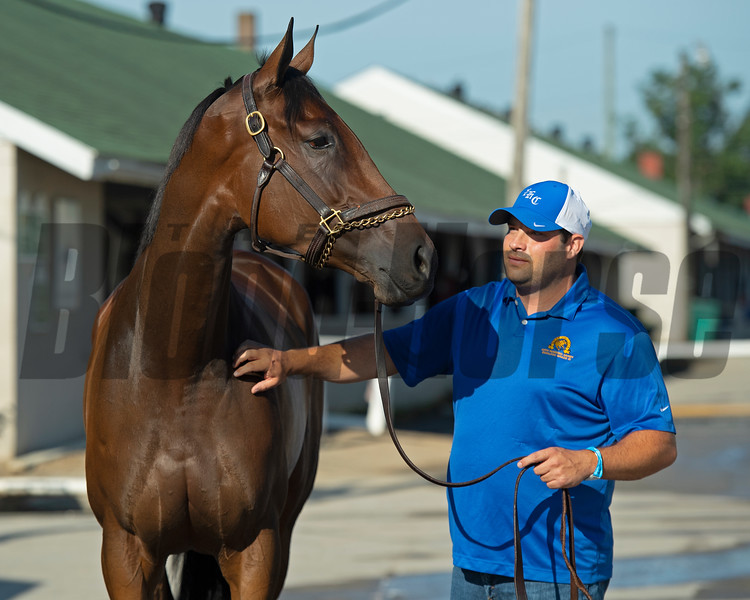 Shedaresthedevil and Brad Cox Sunday, September 6, 2020 at Churchill Downs. Photo: Anne M. Eberhardt