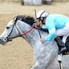 On Fire Baby, Joe Johnson up, wins the La Troienne, Churchill Downs, Louisville, KY 5/3/14, photo by Mathea Kelley;