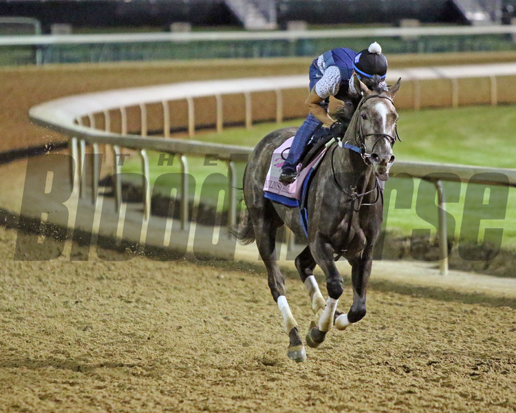 Pauline's Pearl on the track at Churchill Downs on April 24, 2021. Photo By: Chad B. Harmon