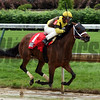 Benner Island and Javier Castellano win Eight Belles Stakes (G2) on Friday, May 5th, 2017 at Churchill Downs.