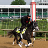 Tapwrit Kentucky Derby Chad B. Harmon