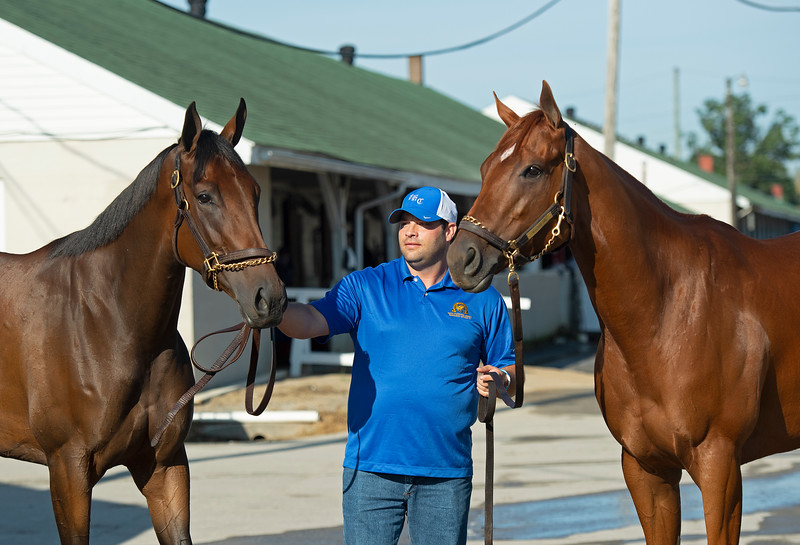 (L-R): Shedaresthedevil, Brad Cox, and Monomoy Girl.<br /> The morning after Authentic wins the Kentucky Derby (G1) at Churchill Downs, Louisville, KY on September 5, 2020.