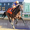Uncle Mo, John Velazquez up, wins the 2010 Juvenile Breeders Cup Day,  Churchill Downs; Louisville; KY; 11.6.10; Mathea Kelley