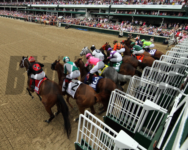 She's a Julie wins the La Troienne Stakes Friday, May 3, 2019 at Churchill Downs. Photo: Chad B. Harmon