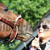 Christina Jelm Battle of Midway Kentucky Derby Chad B. Harmon