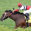 Marchman, Robby Albarado up, wins the Twin Spires Turf Sprint, Churchill Downs, Louisville, KY 5/3/14, photo by Mathea Kelley;