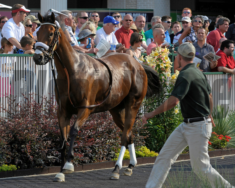 Caption: Emmy Rules breaks out of her saddling stall and goes for a trot before personnel catch her and saddle her at Churchill Downs on June 16, 2012, near Louisville, Ky.<br /> Anne M. Eberhardt photo