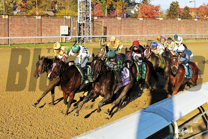 Musical Romance (red cap), with Juan Leyva up, worked his way through the field at the final turn and went on to win the Sentient Jet Breeders' Cup Filly + Mare Sprint (G. I) at Churchill Downs on November 4, 2011. Photo by Crawford Ifland