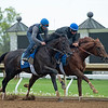 Caption: Maxfield, outside, works with Seek the Peak for Brendan Walsh.<br /> Keeneland scenes and horses on April 25, 2020 Keeneland in Lexington, KY.