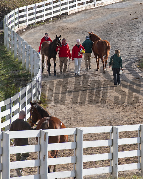 walking to and from the sales<br /> Keeneland January Sales at Keeneland near Lexington, Ky., on Jan. 14, 2021.
