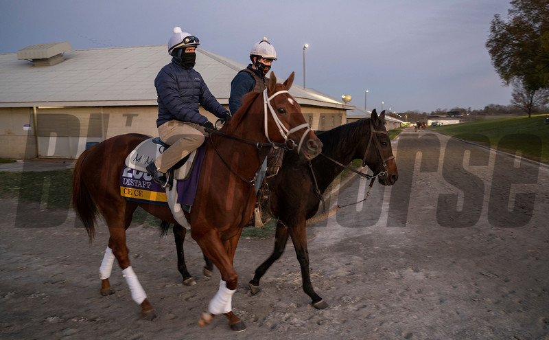 Ce Ce heads to the track at Keeneland Race Course Monday Nov. 2 2020 in Lexington, KY.  Photo by Skip Dickstein