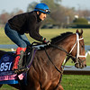 Aunt Pearl <br /> Breeders' Cup horses at Keeneland in Lexington, Ky. on November 5, 2020.