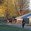 Caption: training<br /> Behind the Scenes at Keeneland during Covid19 virus and the people, horses, and essentials needed to take care of race horses on April 2, 2020 Keeneland in Lexington, KY.