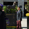 Connections in the paddock area getting a photo with the ecorche statue.<br /> Breeders' Cup horses at Keeneland in Lexington, Ky. on November 6, 2020.