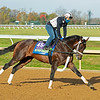Factor This<br /> Breeders' Cup horses at Keeneland in Lexington, Ky. on November 5, 2020.