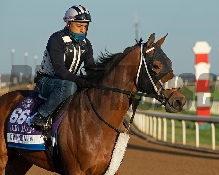 Owendale<br /> Breeders' Cup horses at Keeneland in Lexington, Ky. on November 5, 2020.