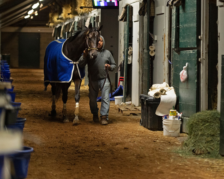 Caption: walking the shredrow<br /> Midnight Bisou at Keeneland on May 2, 2020 Keeneland in Lexington, KY.