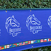 scene<br /> Breeders' Cup horses at Keeneland in Lexington, Ky. on November 4, 2020.