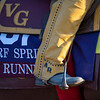 Lots of color on Big Runner at Keeneland Race Course Monday Nov. 2 2020 in Lexington, KY.  Photo by Skip Dickstein