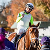 Monomoy Girl ridden by Florent Geroux wins the $2M Breeders' Cup Distaff G1 at Keeneland Race Course Saturday Nov. 7,  2020 in Lexington, KY.  Photo by Skip Dickstein