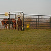 Caption: Horse goes to round pen area on Rice Road. <br /> Behind the Scenes at Keeneland during Covid19 virus and the people, horses, and essentials needed to take care of race horses on April 2, 2020 Keeneland in Lexington, KY.