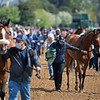 Grooms and trainers after unsaddling and walking back to their barns after a race<br /> Scenes at Keeneland near Lexington, Ky., on April 15, 2021. .