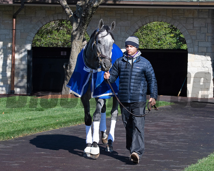 Essential Quality schooling at Keeneland. <br /> Scenes from opening day at Keeneland near Lexington, Ky., on April 2, 2021.