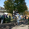 Racehorses in paddock at Keeneland in Lexington, Ky. on Nov. 7, 2020.