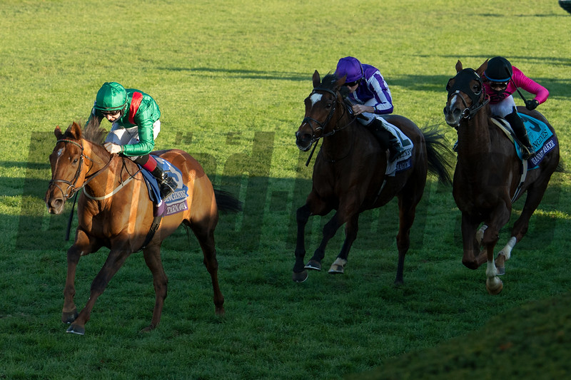 Tarnawa with Colin Keane wins the Breeders' Cup Turf at Keeneland in Lexington, Ky. on Nov. 7, 2020. Photo: Anne M. Eberhardt