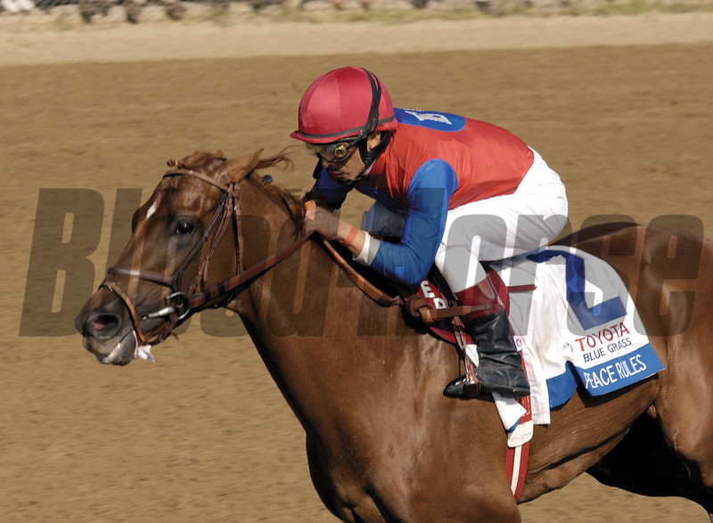 Peace Rules with Edgar Prado up wins the Blue Grass Stakes (gr. I) on April 12, 2003, at Keeneland.<br /> BluegrassStakesDayOrigs2image 15<br /> Photo by Anne M. Eberhardt