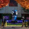 Many beautiful scenes are at hand on Breeders' Cup Day 2 at Keeneland Race Course Saturday Nov. 7,  2020 in Lexington, KY.  Photo by Skip Dickstein