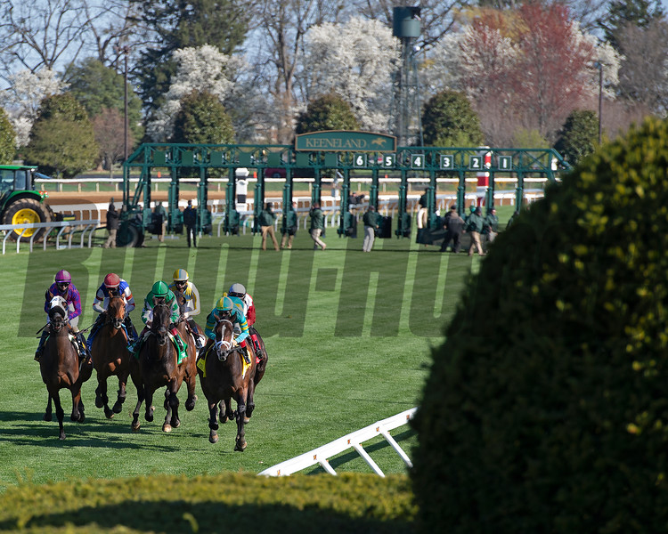 First time by scene as #1 Scarlett Sky with Joel Rosario wins the Kentucky Utilities Transylvania (G3T)<br /> at Keeneland near Lexington, Ky., on April 2, 2021.