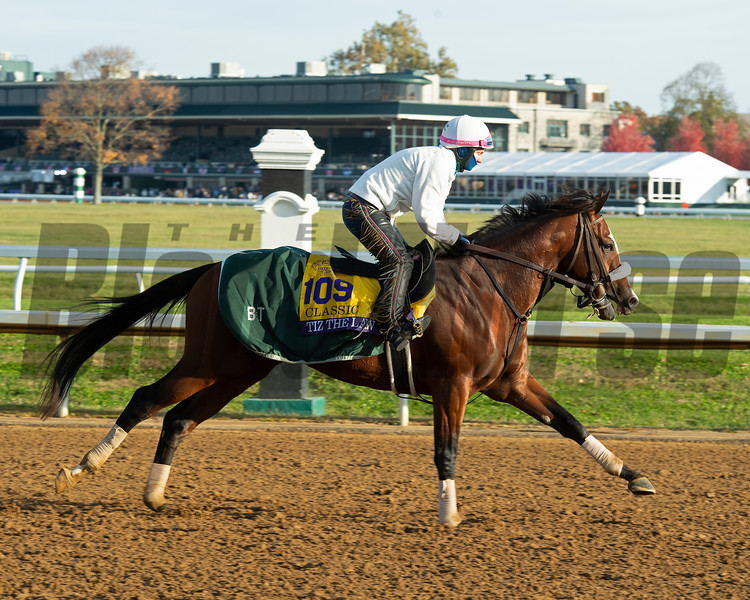 Tiz the Law<br /> Breeders' Cup horses at Keeneland in Lexington, Ky. on November 5, 2020.