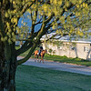 Caption: Horse and exercise rider returning to a Rice Road training barn. <br /> Behind the Scenes at Keeneland during Covid19 virus and the people, horses, and essentials needed to take care of race horses on April 2, 2020 Keeneland in Lexington, KY.