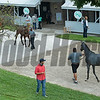 at Keeneland September sale yearlings in Lexington, KY on September 16, 2020.