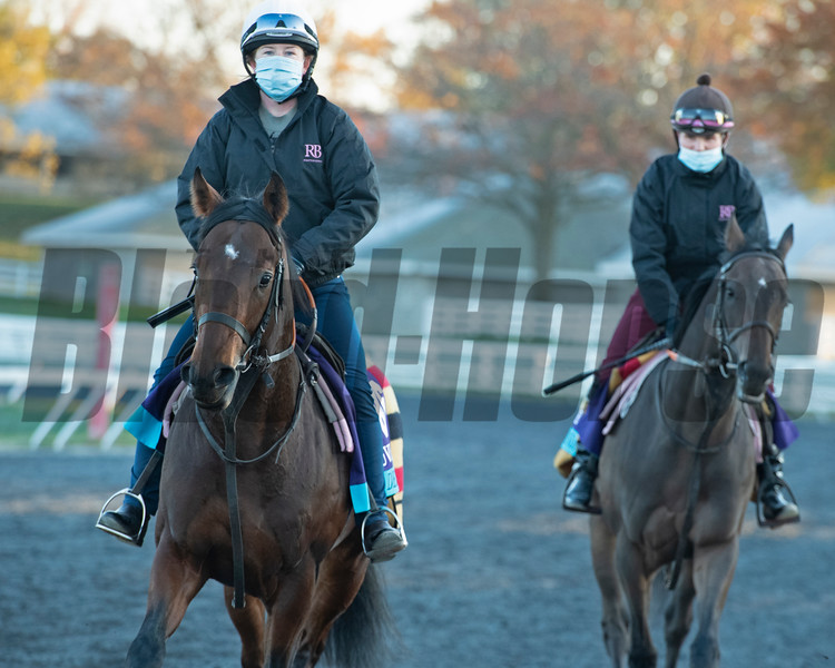 Devilwala, left foreground, with New Mandate on right at Keeneland in Lexington, Ky. on November 2, 2020. Photo: Anne M. Eberhardt