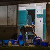 A groom washes feed tubs in the barn area at Keeneland Race Course Wednesday Nov. 4 2020 in Lexington, KY.  Photo by Skip Dickstein