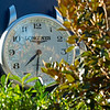 Longines clock in paddock area<br /> Breeders' Cup horses at Keeneland in Lexington, Ky. on November 4, 2020.