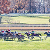 Glass Slippers ridden by Tom Eaves wins the $1M Turf Sprint at Keeneland Race Course Saturday, Nov. 7 2020 in Lexington, KY.  Photo by Skip Dickstein